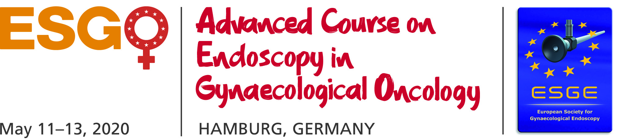 ESGO Advanced Course on Endoscopy in Gynaecological Oncology.kr