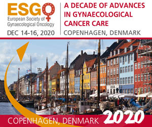 Guidelines Esgo European Society Of Gynaecological Oncology Esgo European Society Of Gynaecological Oncology