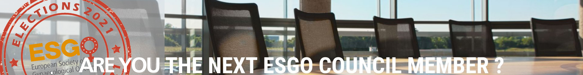 ESGO-Council4_2021